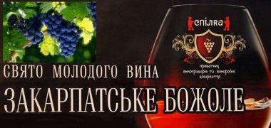 c_380_180_16777215_00_images_articles_ukraine_excursions_bozhole2.jpg